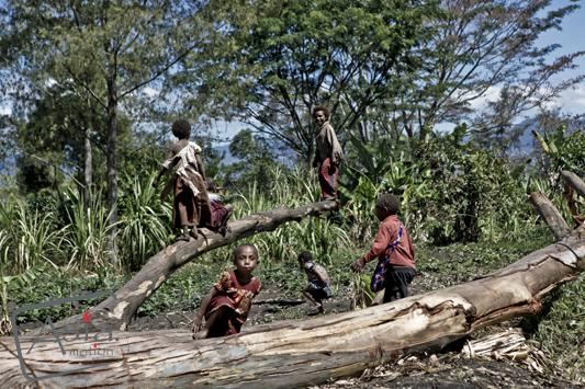 witch hunt new guinea The belief in sorcery and witchcraft in papua new guinea (png) is widespread  and has an important weight in most of the spheres of public.